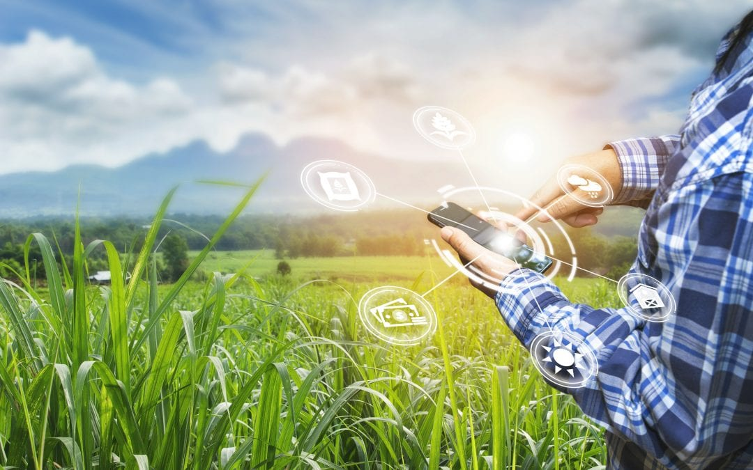 Agribusiness Cyber Liability